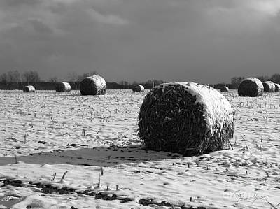 Photograph - Hay Bails In The Snow by Tom Brickhouse