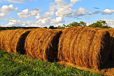 Pitch Forks Photograph - Hay Bale Close Up by Frozen in Time Fine Art Photography