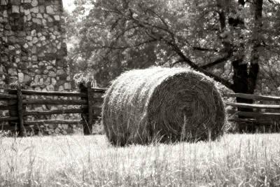 Hay Bale In A Farm Field Print by Heather Allen
