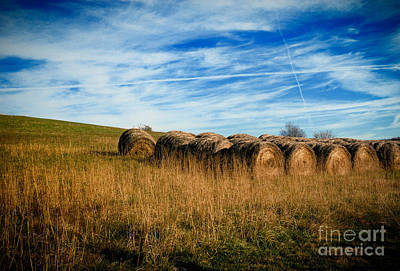 Harvesting Photograph - Hay Bales And Contrails by Amy Cicconi