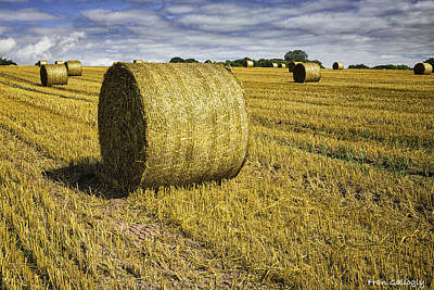 Photograph - Hay Bales by Fran Gallogly