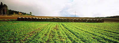 Bale Photograph - Hay Bales In A Farm Land, Germany by Panoramic Images