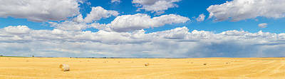 Bale Photograph - Hay Bales In A Field, Alberta, Canada by Panoramic Images