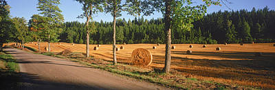Bale Photograph - Hay Bales In A Field, Flens, Sweden by Panoramic Images
