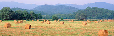 Bale Photograph - Hay Bales In A Field, Murphy, North by Panoramic Images