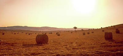 Bale Photograph - Hay Bales In A Field, Pienza, Siena by Panoramic Images