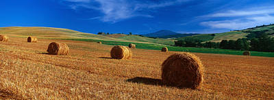 Bale Photograph - Hay Bales In A Field, Val Dorcia, Siena by Panoramic Images