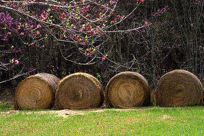 Photograph - Hay Bales In Springtime by Emanuel Tanjala