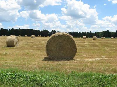Hay Bales In The Pasture Art Print