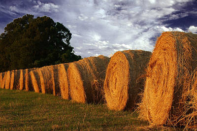 Design Turnpike Books - Hay Bales  by Keith Gondron