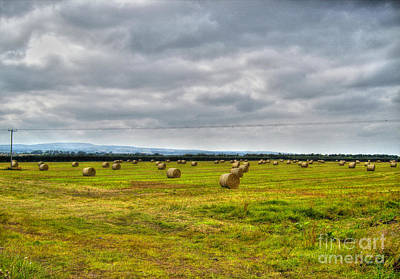 Photograph - Hay Bales by Nina Ficur Feenan