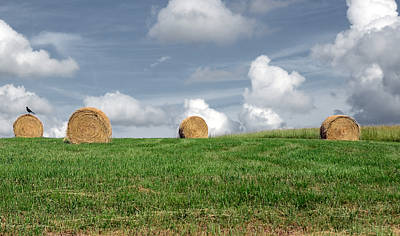 Hay Bales Art Print by Steven Michael