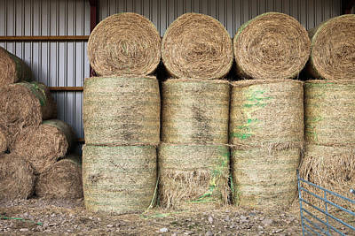 Bale Photograph - Hay Bales by Tom Gowanlock