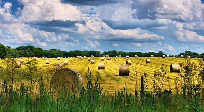 Photograph - Hay Bales by Virginia Folkman