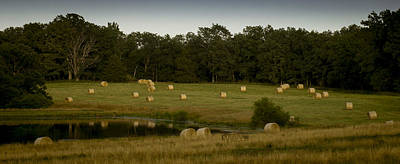 Photograph - Hay Bales by Wayne Meyer