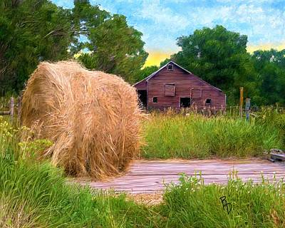 Digital Art - Hay Deck by Ric Darrell