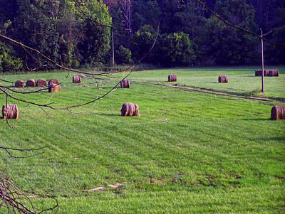 Hay Digital Art - Hay Field by Chris Flees