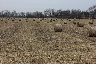 All American - Hay Field by Jeff Roney