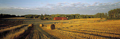Suede Photograph - Hay Field Sweden by Panoramic Images