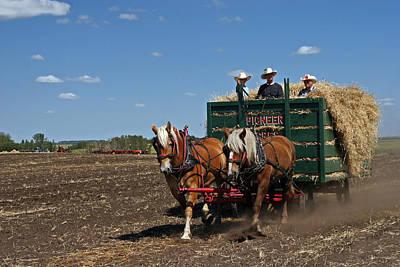 Photograph - Hay Harvesting by Inge Riis McDonald