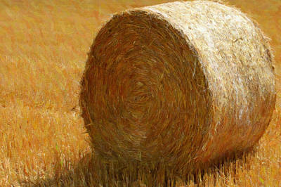 Lithuanian Painting - Hay In The Field by Lanjee Chee