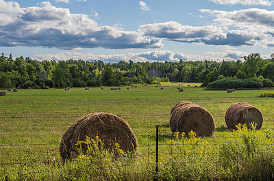 Photograph - Hay On The Field by Celso Bressan