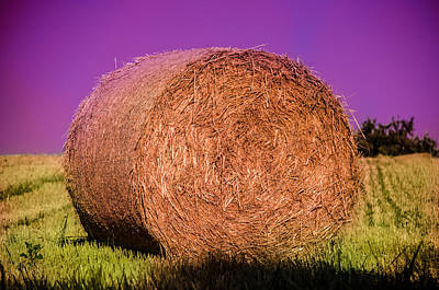 Photograph - Hay Roll by Dany Lison