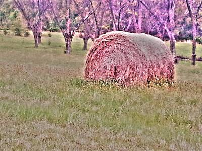 Photograph - Hay Stack by Sarah E Kohara
