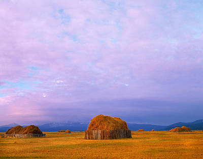 Photograph - Hay Stacks by Leland D Howard