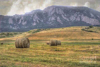 Bale Photograph - Hay There by Juli Scalzi