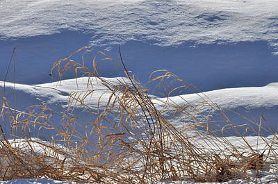 Photograph - Hayfield In Winter by Gerald Hiam