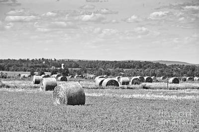 Black And White Photograph - Haying Bales In Black And White by Cheryl Baxter