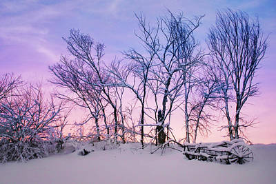 Photograph - Hayrake And Trees - Winter Sunset by Nikolyn McDonald