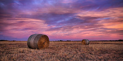 Field. Cloud Photograph - Hayseed by Thomas Zimmerman
