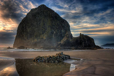 Photograph - Haystack Rock by Joseph Bowman