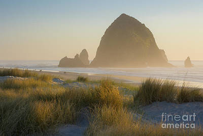 Photograph - Haystack Sunset by Brian Jannsen