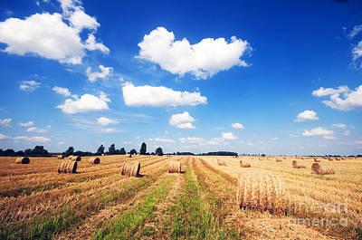 Straw Photograph - Haystacks In The Field by Michal Bednarek