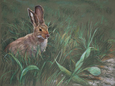 Rabbit Painting - Hazel by Christopher Reid