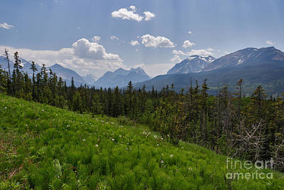 Photograph - Hazy Waterton Park by Charles Kozierok