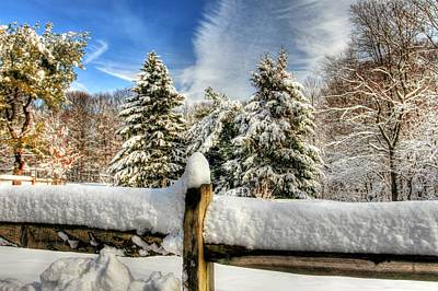 Snow Drifts Digital Art - Hdr Of Three Trees by Geraldine Scull