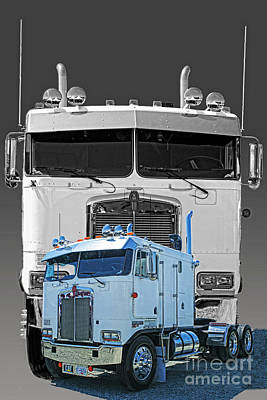 Hdrcatr3137-13 Art Print by Randy Harris