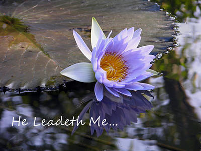 Photograph - He Leadeth Me by John Lautermilch