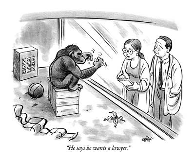 Monkeys Drawing - He Says He Wants A Lawyer by Tom Chalkle