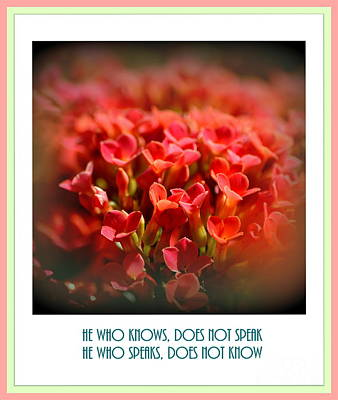 Motivational Sayings Photograph - He Who Knows Does Not Speak by Susanne Van Hulst