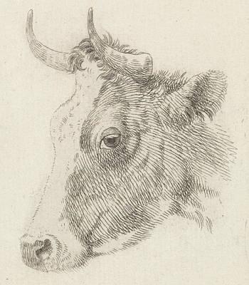 Dirk Drawing - Head Of A Bull, Dirk Van Oosterhoudt by Dirk Van Oosterhoudt