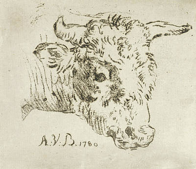 Bos Bos Drawing - Head Of A Cow, Print Maker Anthonie Van Den Bos by Anthonie Van Den Bos