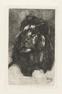Bos Bos Drawing - Head Of A Lion, Gerard Jan Bos by Quint Lox