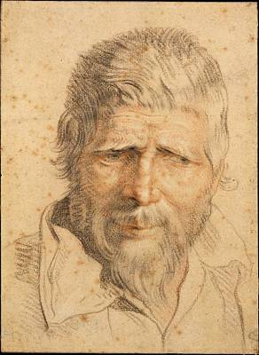 Flemish Drawing - Head Of A Man by Flemish , mid-seventeenth century