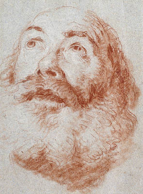 Visage Drawing - Head Of An Old Man Looking Up by Giovanni Battista Tiepolo