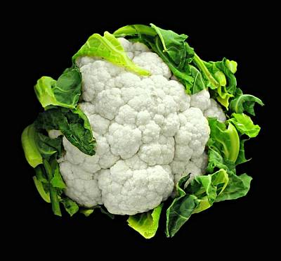 Grocery Store Photograph - Head Of Cauliflower by Diana Angstadt